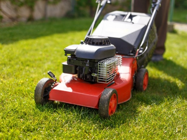 Aide Au Logis AIDE A LA PERSONNE Quelle Tondeuse Choisir Pour Votre Jardin